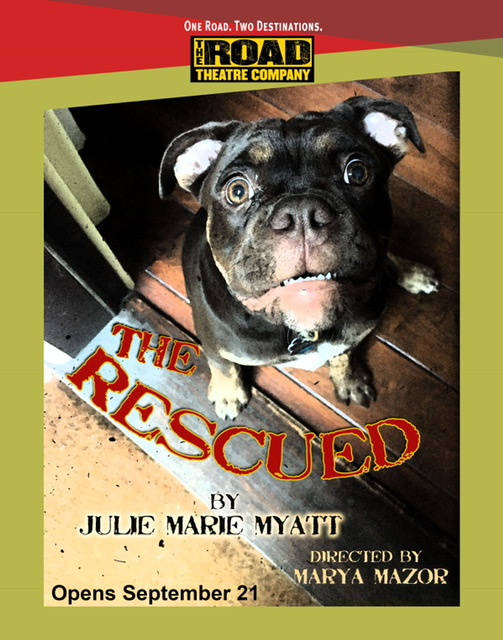 Rescued Poster